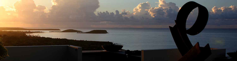 Rooftop garden sunset